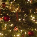 Weihnachten 021